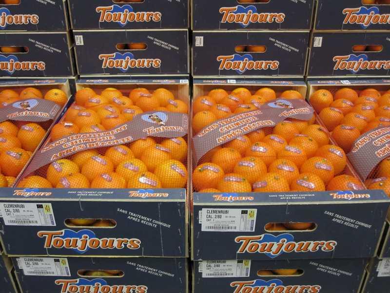 clementines espagne non traitées TOUJOURS