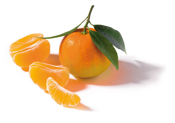 oranges et cl mentines toujours cl mentines oranges cl mentines et citrons d espagne. Black Bedroom Furniture Sets. Home Design Ideas