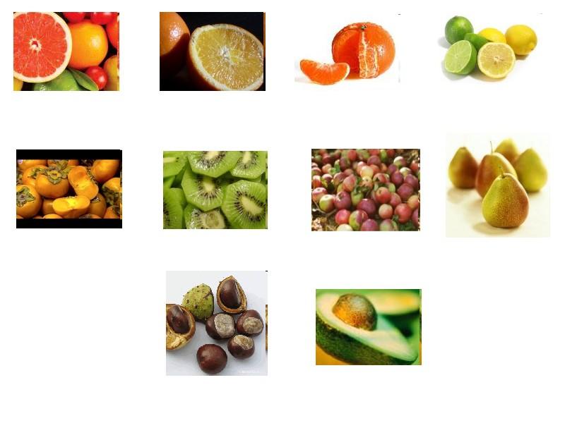 Oranges et cl mentines toujours cl mentine feuille oranges cl mentines et citrons d espagne - Fruit de saison decembre ...