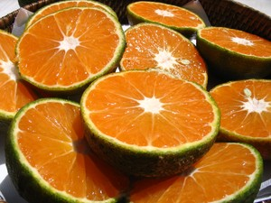 mandarines et clémentines des DOM-TOM