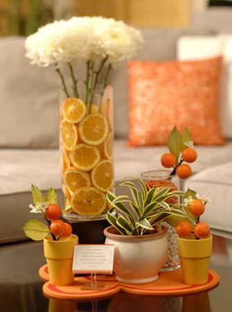 agrumes vases