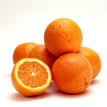 oranges valencia late non traitées toujours