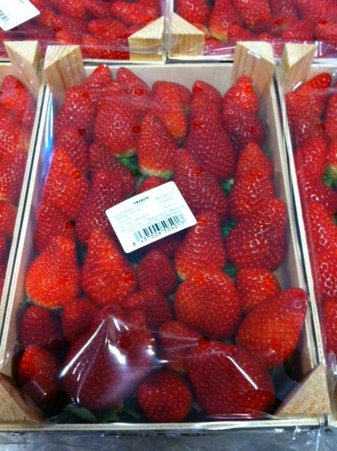 fraises espagne 3